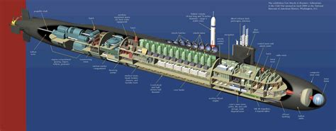 Submarine Sections by Ohio Class Submarine