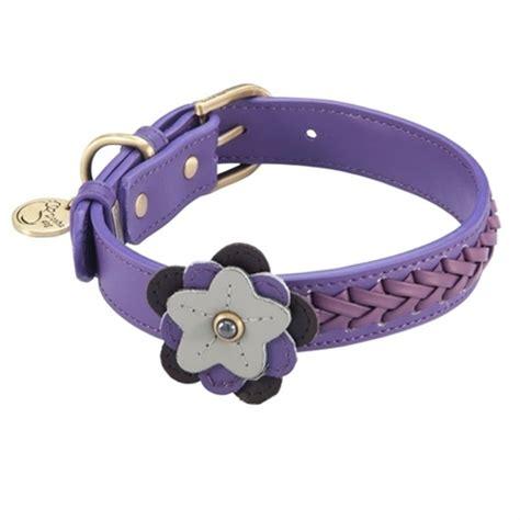 purple collars purple leather petal flower collar dosha