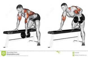 Bench Press Raw Exercising End Dumbbell With One Hand Stock Illustration