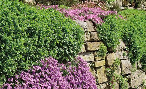 Garten Hangbefestigung Pflanzen by Hangbefestigung Selbst De