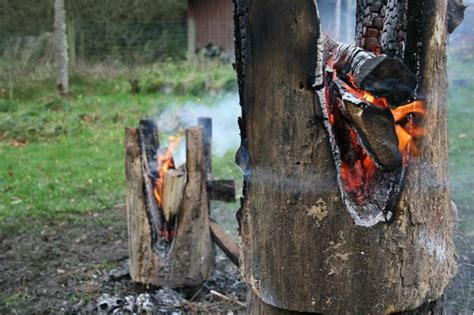 Burning Stool by Belgian Designer Burns Furniture Out Of Dead Wood Wired Uk