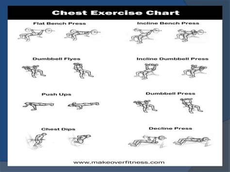 develop chest shoulders arm back triceps n leg with
