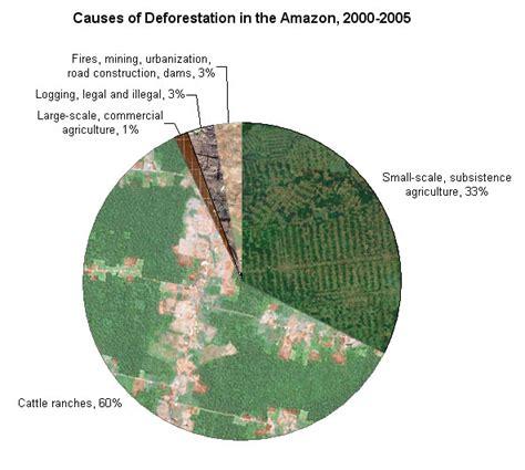 deforestation diagram deforestation the merig