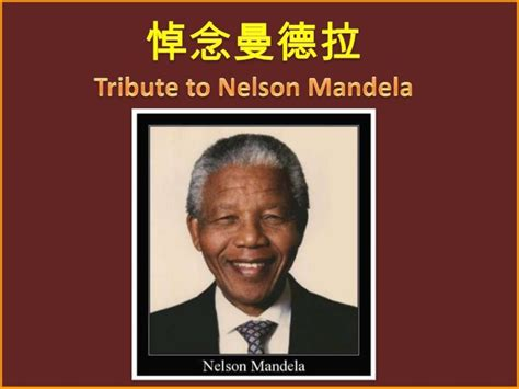 a tribute to nelson mandela tribute to nelson mandela 悼念曼德拉