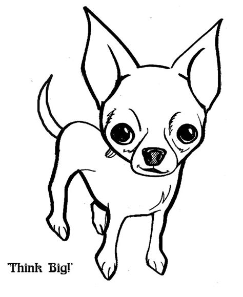 chiwawa puppies coloring pages chihuahua coloring pages only coloring pages