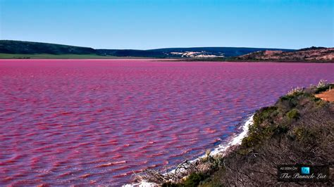 pink lake the remarkable pink lake hillier western australia s