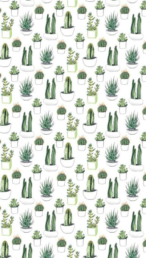 pastel cactus pattern cactus wallpaper google zoeken patronen cabo