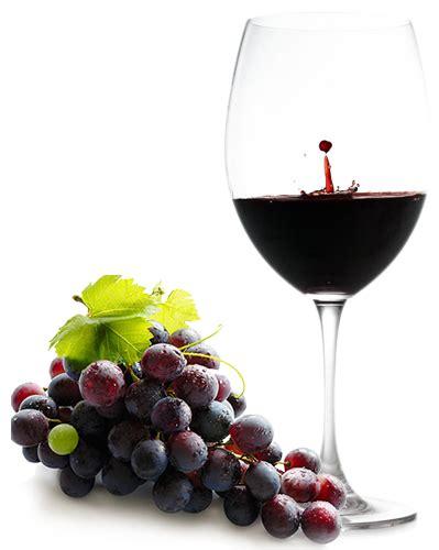 bicchieri vino rosso wine terraditoscana