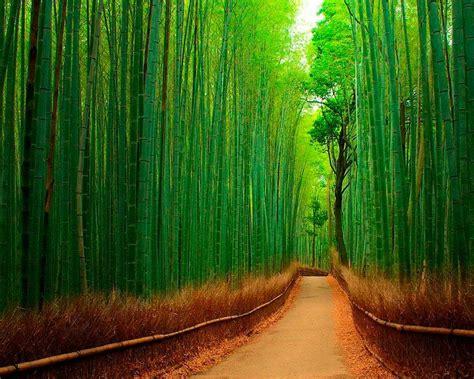 imagenes increibles de creer imagenes de los lugares mas increibles del mundo taringa