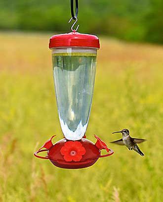 perky pet 174 top fill hummingbird feeder 138tf perkypet com