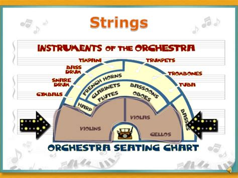 how many sections in an orchestra what is an orchestra