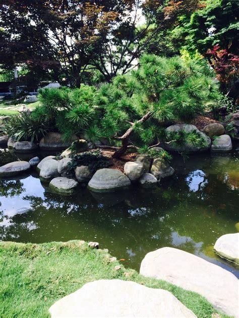 Botanic Gardens San Antonio San Antonio Botanical Garden Botanical Gardens Yelp