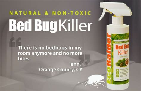 bed bug treatments that work the 25 best bed bugs treatment ideas on pinterest bed