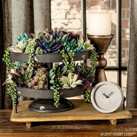layer succulent picks   tiered tray   elegant