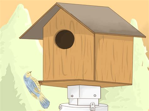 bird feeder house how to install a bird feeder or bird house 10 steps