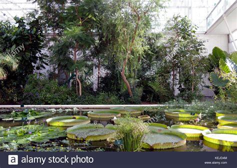Padua Botanical Garden High Roof Tropical Stock Photos High Roof Tropical Stock Images Alamy
