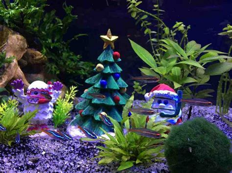 aquarium christmas decorations tv aquarium decor