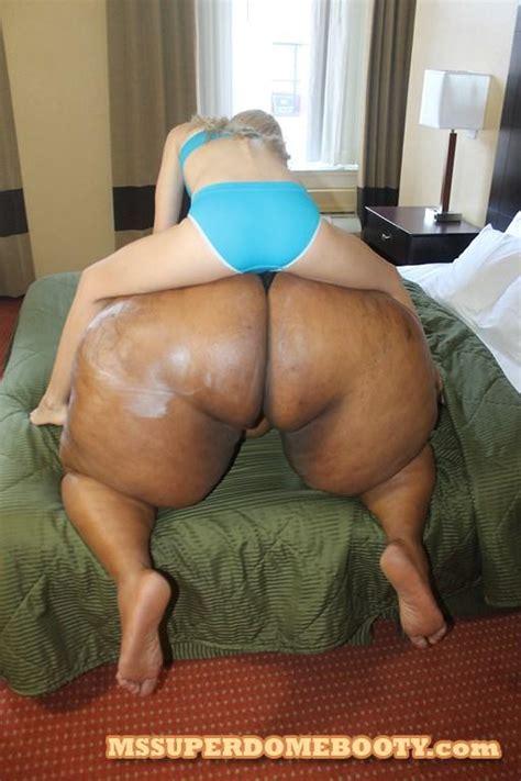 Ms Superdome Booty Odette Image Fap