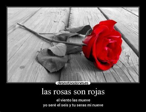 imagenes rosas con poemas poemas con rosas rojas imagui