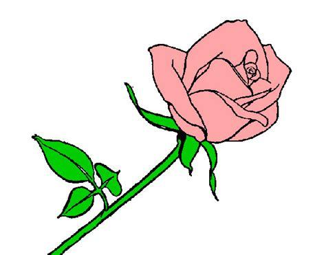 disegno di rosa fiore disegno rosa colorato da samell il 29 di ottobre 2012