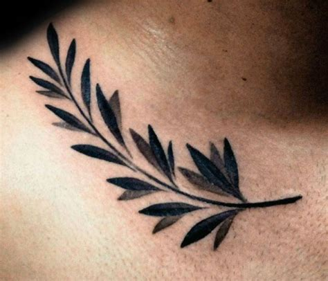olive tattoo 70 olive branch designs for ornamental ink ideas