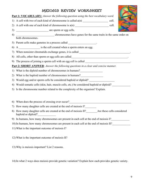 Number Of Chromosomes Worksheet Answers by Uncategorized Number Of Chromosomes Worksheet