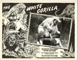 Grindhouse Lobby Card Template by For Whom The Bell Tolls Lobby Card 2 Cooper And 48