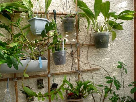 Support Plante Grimpante Bambou by Support Plante Grimpante Fer Trouvez Le Meilleur Prix