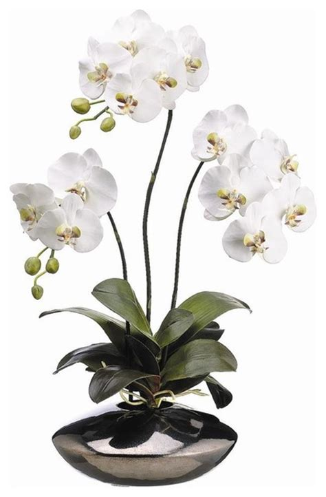 white phalaenopsis silk orchid floral design o131 31 quot white phalaenopsis orchid plant in ceramic pot