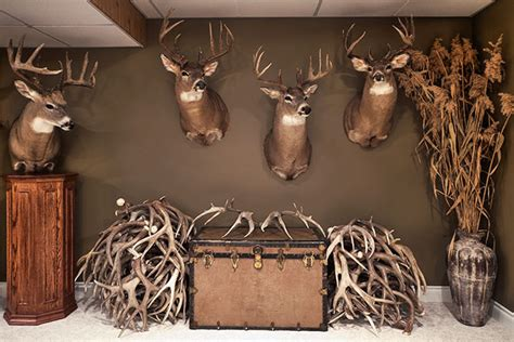Accent Wall Ideas For Bedroom by Outfitting Your Trophy Room Petersen S Hunting