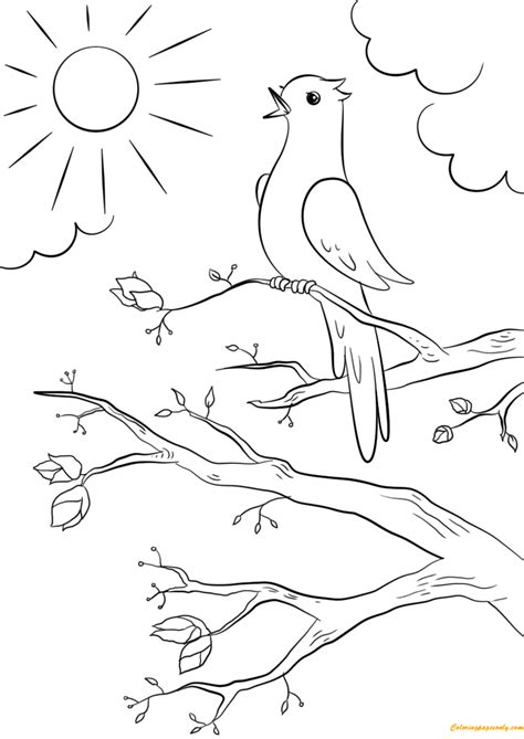 spring bird coloring page free coloring pages online