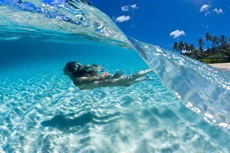 aqua dive aqua dive photograph by davey