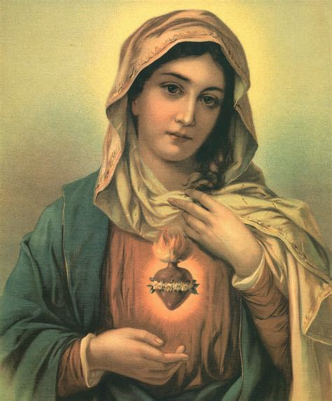 immaculate heart of mary consecration to the immaculate heart of mary