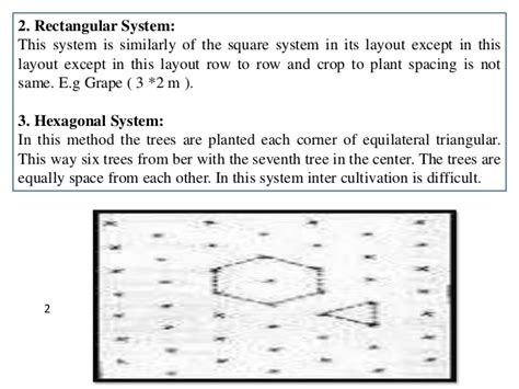 layout of orchard ppt b sc agri i po h unit 2 method of plant propagation and