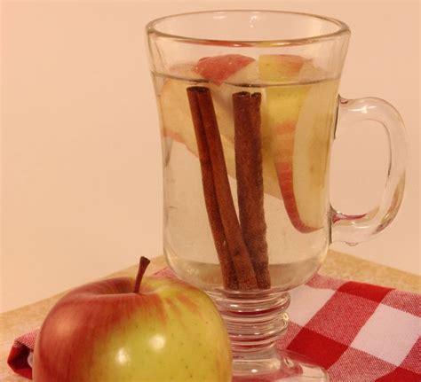 Apple Cinnamon Detox Water Side Effects by Detox Water Enjoyment Apple And Cinnamon Remedy For
