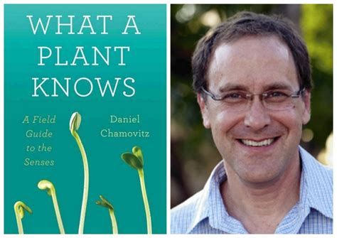 what a plant knows a field guide to the senses updated and expanded edition books plant