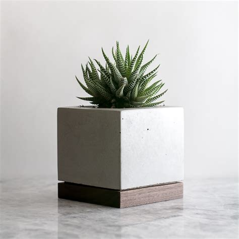 Planters Walnuts by Planter Walnut Concrete Komolab Touch Of Modern