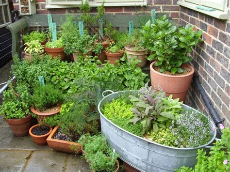 Potted Herb Garden Ideas 25 Best Ideas About Potted Herb Gardens On Pinterest Apartment Herb Gardens Growing Herbs In