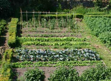 potager de jardin jardin potager le potager