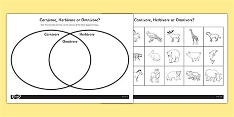 herbivore carnivore omnivore venn diagram omnivore carnivore or herbivore venn diagram sorting worksheet