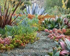 Succulent Garden Layout Succulent Garden Home Design Ideas Pictures Remodel And Decor
