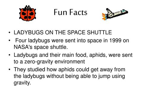 biography in context fcps ppt the life cycle of ladybugs powerpoint presentation