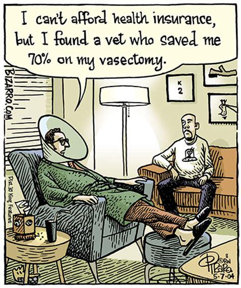 vasectomy for dogs silent cat lantern bizarro