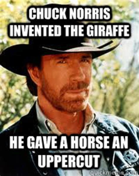 Uppercut Meme - chuck norris invented the giraffe he gave a horse an