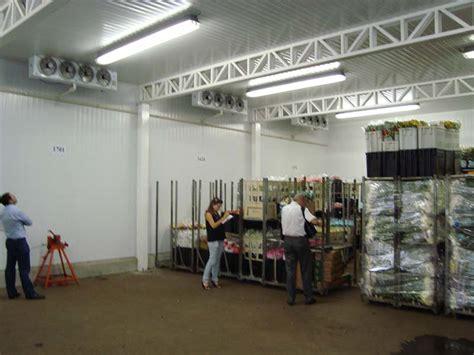 camaras frigorificas para flores c 226 maras frigor 237 ficas para flores pr 243 frio