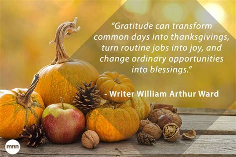 12 inspiring quotes about gratitude mnn nature