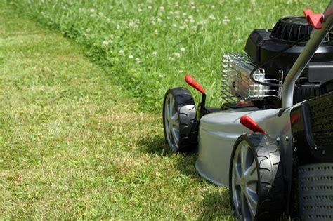 lawn care local edge lawn care lawn care service in utah