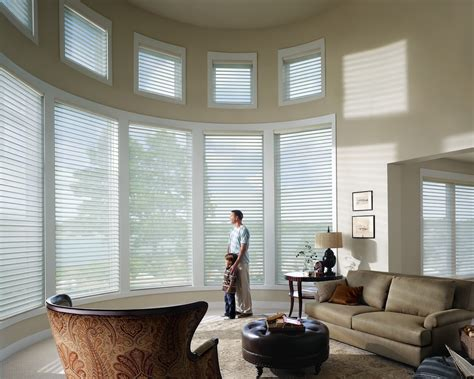 Motorized Window Shades The Buzz On Blinds Save 100 00 On Douglas