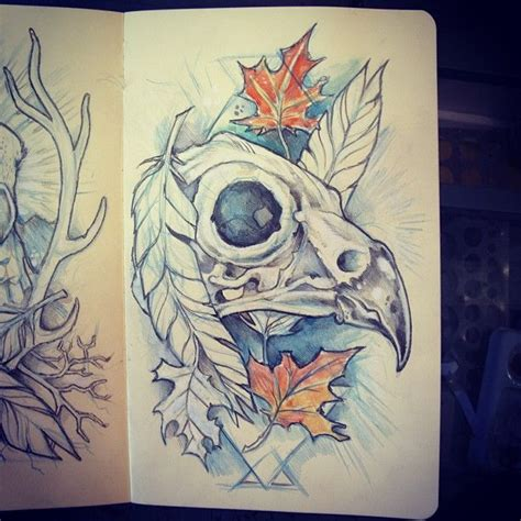 bird skull tattoo bird skull drawing drawing and ideas