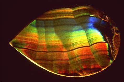 Batu Telur Pertified Wood Es 38 91 best images about iris agate on